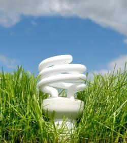 R duire sa consommation lectrique ide electriciens - Ampoule basse consommation gratuite ...